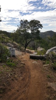 view of trail 7 at you yang mountain bike park