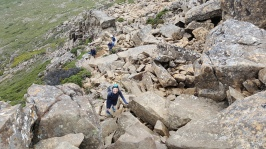 On the climb up to the Cradle Mountain summit
