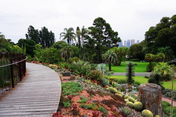 Melbourne Botanic gardens resized0001.JPG