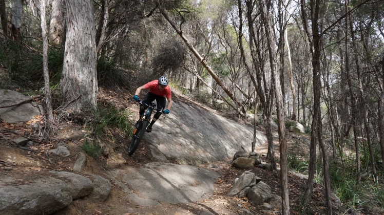 Derby Mountain Bike Park Black stump into 23 stitches