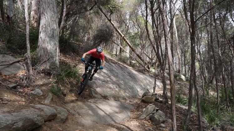 Derby Mountain Bike Park Black stump into 23 stitches